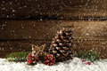 Pine cone in snow Royalty Free Stock Photo