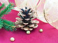 Pine Cones and Needles Royalty Free Stock Photos