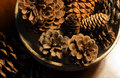 Pine cones in Pottery Bowl Stock Image