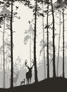 а pine forest with a family of deer and birds Royalty Free Stock Photo