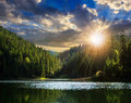 Pine forest and lake near the mountain early in the morning at s Royalty Free Stock Photo