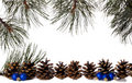 Pine Frame with Ornaments Royalty Free Stock Image