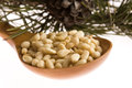 Pine nuts on the white Stock Images