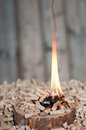 Pine pellets wooden slice flames selective focus foreground Stock Photography