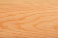 Pine plank. Stock Photography