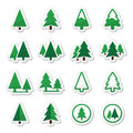 Pine tree icons set trees forest or park green labels isolated on white Royalty Free Stock Images