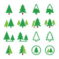 Pine tree park vector green icons set trees forest or isolated on white Stock Photos