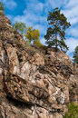 A pine tree on the top of the rock Royalty Free Stock Photo
