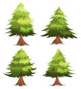 Pine Trees And Firs Set Royalty Free Stock Photo