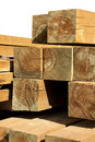 Pine wood logs Stock Image