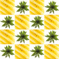Pineaple graphic square collage Royalty Free Stock Photo