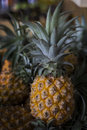 Pineaple that is one of tropical fruits with blurry background. Royalty Free Stock Photo