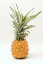 Pineapple Royalty Free Stock Image