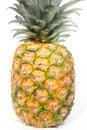 Pineapple Στοκ Φωτογραφία