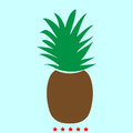 Pineapple it is color icon .