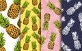 Pineapple decorative seamless patterns set Royalty Free Stock Photo