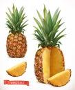 Pineapple. Fresh fruit 3d vector icon