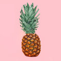 Pineapple fruit on colorful pink background, ananas Royalty Free Stock Photo