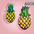 Pineapple icon. Pineapple vector label.