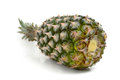 Pineapple isolated on white background Stock Images