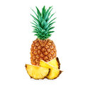 Pineapple isolated on white Royalty Free Stock Photo