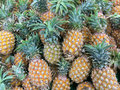 Pineapple a lot of fruit background Royalty Free Stock Photos