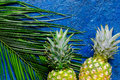 Pineapple and palm branch on blue table background top view