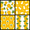 Pineapple Seamless Patterns Set