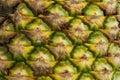 Pineapple Skin Royalty Free Stock Photo