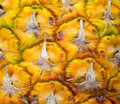 Pineapple surface close up. Macro photo of orange exotic fruit with textured skin Royalty Free Stock Photo
