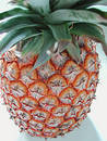 Pineapple top down view Royalty Free Stock Photo