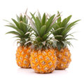 Pineapple tropical fruit or ananas isolated on white background cutout Stock Image
