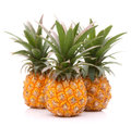 Pineapple tropical fruit or ananas isolated on white background cutout Stock Images