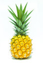 Pineapple a on white background Royalty Free Stock Photography
