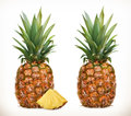 Pineapple. Whole and pieces. Sweet fruit. 3d vector icons set