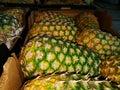 Pineapples box Royalty Free Stock Photo