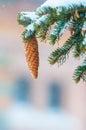 Pinecone Tree On Snow