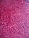 Pink Animal Skin