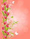 Pink background with tulips Stock Photo