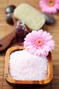 Pink bath salt Royalty Free Stock Photo