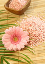Pink bath salt and pink gerber Royalty Free Stock Photo