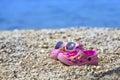 Pink Beach Kid`s Crocs / Sanda...