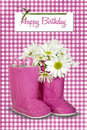 Pink Birthday Boots Stock Images