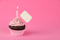 Pink birthday cupcake with placard a candle and blank Stock Images