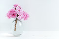 Pink blossom styled stock photography with space for your own business message promotion headline or design great for blogging and Stock Photo