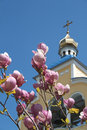 Pink blossoms and church Stock Photos