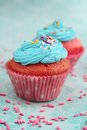 Pink and blue cupcake two cupcakes with icing on a aqua background Royalty Free Stock Photography