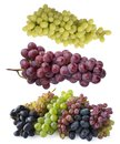 Pink, blue and green grapes isolated on white background. Top view. Bunch of pink, blue and green grapes isolated on white backgro Royalty Free Stock Photo
