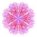 Pink-blue mandala, boho chic style, patchwork background. Vector illustration, Great design element for congratulation