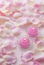 Pink candles Stock Image